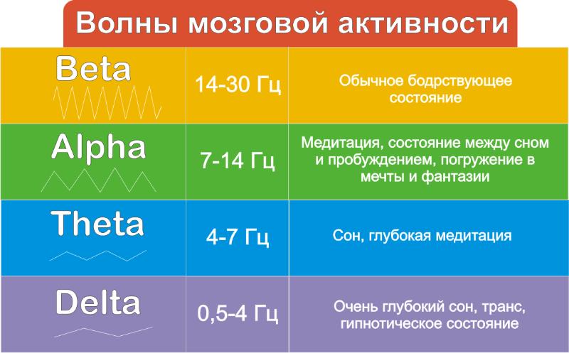 частоты мозга