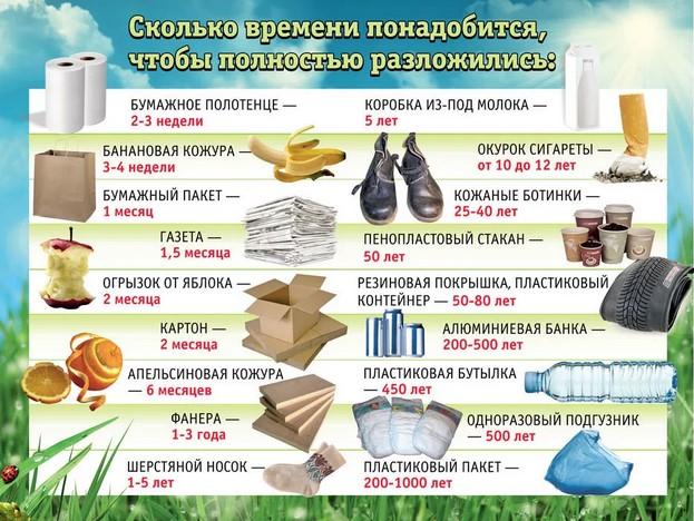 сроки разложения продуктов жизнедеятелности