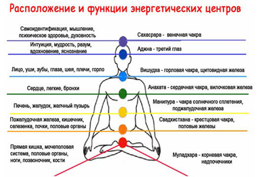 какие органы находятся рядом с чакрами